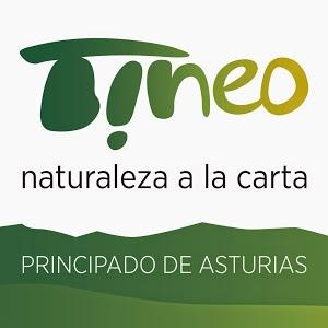 logo-tineo-turismo